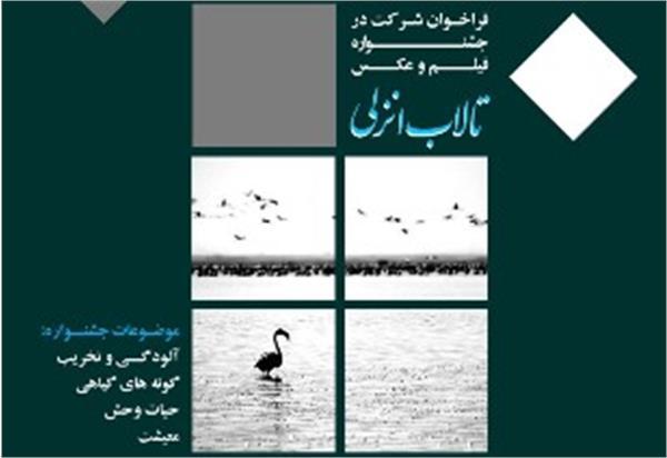 فراخوان جشنواره فیلم و عکس تالاب انزلی